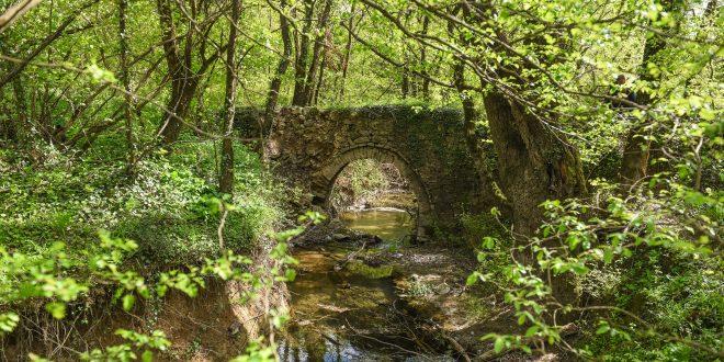 Mostovi na potoku Ljutotuk i Vranjak